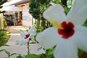 Lagunde Beach Resort, Курортные отели  Ослоб - big - 16