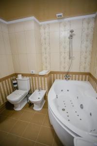 Aristokrat, Hotely  Vinnytsya - big - 65
