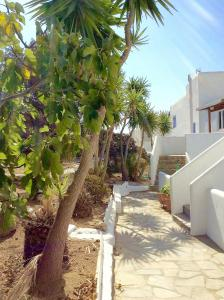 Manos Studios, Ferienwohnungen  Platis Yialos Mykonos - big - 53