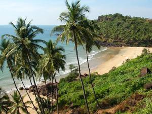 Blue Lagoon Resort Goa, Rezorty  Cola - big - 85