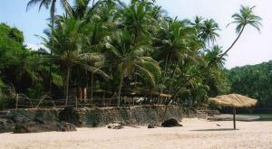 Blue Lagoon Resort Goa, Rezorty  Cola - big - 77