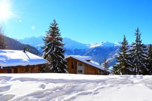 Tayannes A 016, Apartments  Verbier - big - 5