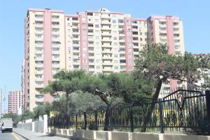 Апартаменты Шамси - фото 2