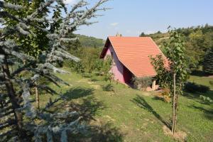 Vikend kuća Stražilovo, Дома для отпуска  Сремски-Карловци - big - 9