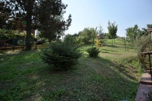 Vikend kuća Stražilovo, Holiday homes  Sremski Karlovci - big - 11