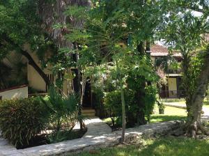 Casa Armonia, Apartmanok  Playa del Carmen - big - 15