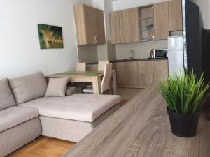 Apartment Yut in Budva