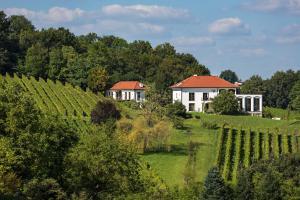 Weingut Hirschmugl - Domaene am Seggauberg