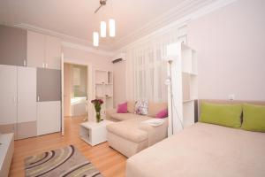 Apartment Mina, Apartmanok  Belgrád - big - 12