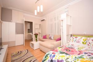 Apartment Mina, Appartamenti  Belgrado - big - 1