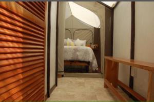 Rhincodon Typus, Hotel  Isola Holbox - big - 38