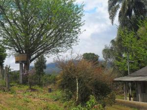 Rancho Assel, Загородные дома  Campina Grande do Sul - big - 12