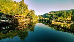 Pansion River - фото 2