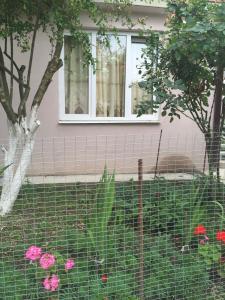 Гостевой дом Гагра - фото 2