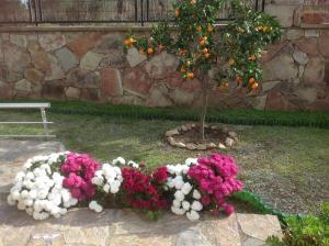 Villa Sezgül, Vily  Ayvalık - big - 13