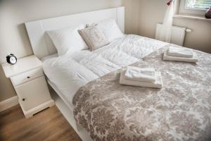 Apartamenty Winnica, Ferienwohnungen  Thorn - big - 31