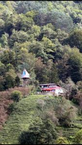 Olimbera köy evi