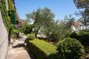 Palma Apartment, Ferienwohnungen  Slatine - big - 18