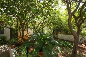 Palma Apartment, Ferienwohnungen  Slatine - big - 19