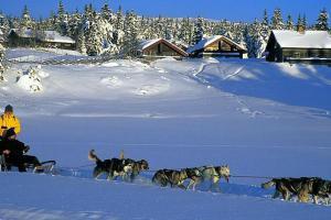Holiday Home Nordseterveien - Hafjell / Lillehammer