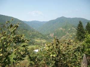 Дом для отпуска Tibeta, Кеда