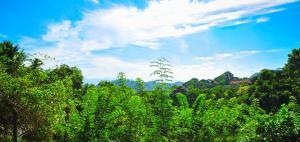 Hill Cottage, Priváty  Kandy - big - 4