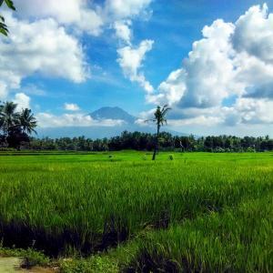 Anggun Homestay