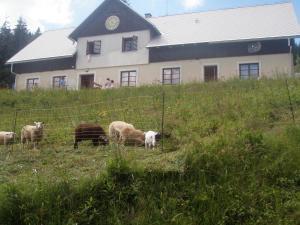 Chata Poutník