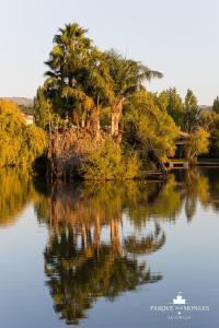 Parque dos Monges, Zelt-Lodges  Alcobaça - big - 22