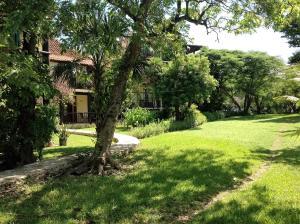 Casa Armonia, Apartmanok  Playa del Carmen - big - 43