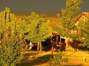 Wayra Pampa Posada & Aparts, Inns  San Lorenzo - big - 23