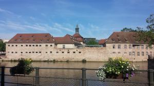 Héberges de l'ILL - Studios PINSON - Apartment - Strasbourg