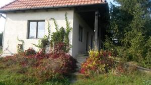Tamarix vendégház