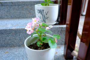 Taizhou Xianju Xian Wei B&B