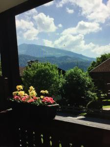 Ferienwohnung Flömer - Apartment - Reit im Winkl