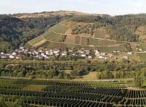 Gästehaus-Weingut Michael Scholer