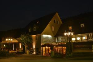 Waldhotel im Wiesengrund, Hotels  Hürtgenwald - big - 19