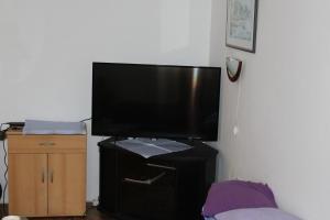 Apartment Vesna Flowers