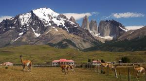 Nash Patagonia