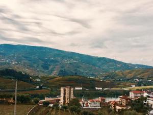 Douro Apartamentos