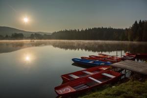 Orea Resort Devět Skal Vysočina, Hotely  Sněžné - big - 42