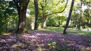 Les Jardins d'Hélène