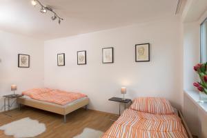 Rippoldsauerstrasse Apartment