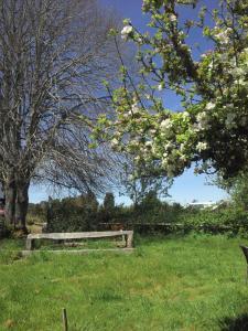 Ecoturismo Los Manzanos
