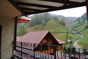Pensiune Restaurant Piatra Craiului, Гостевые дома  Dîmbovicioara - big - 3