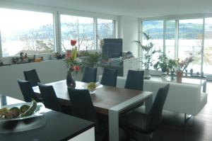 Gorgeous Penthouse at Zurich Lake