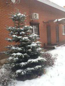Апартаменты на Курортной, 33 - фото 24