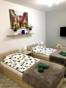 Apartamenty na Pradze, Apartmanok  Varsó - big - 42
