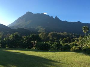 Magnificent Mountain View Retreat, Nyaralók  Csiangdau - big - 32