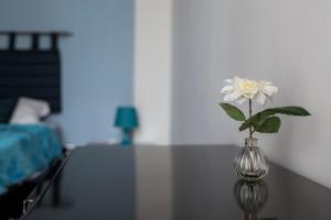 Daisy apartament a Chiaia